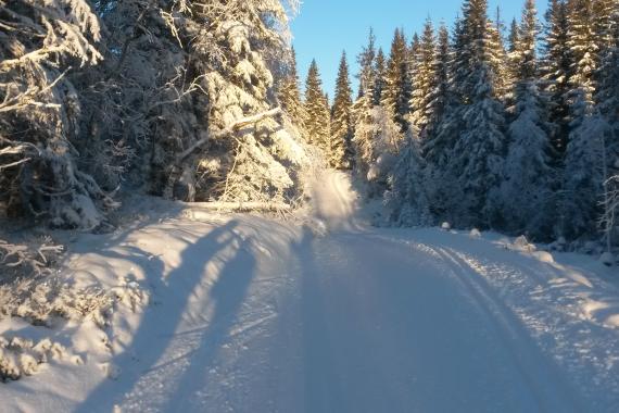Velkommen til Madshus Skimaraton søndag 14. februar 2016