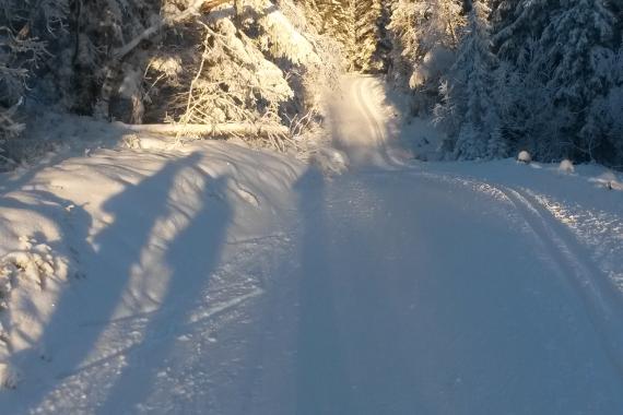 Fine skiforhold i Gjøvikmarka